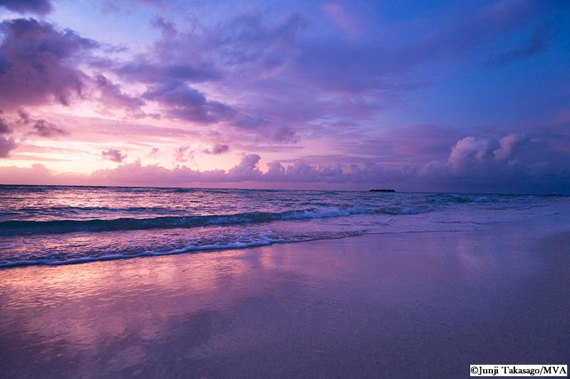 マイクロビーチ (Micro Beach)