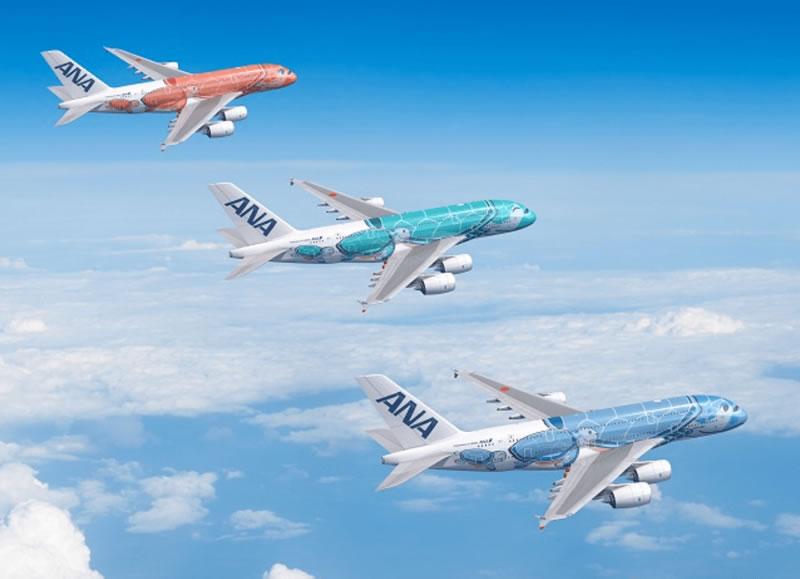 エアバスA380型機「FLYING HONU」/©全日空