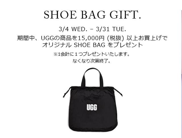 SHOE BAG GIFT